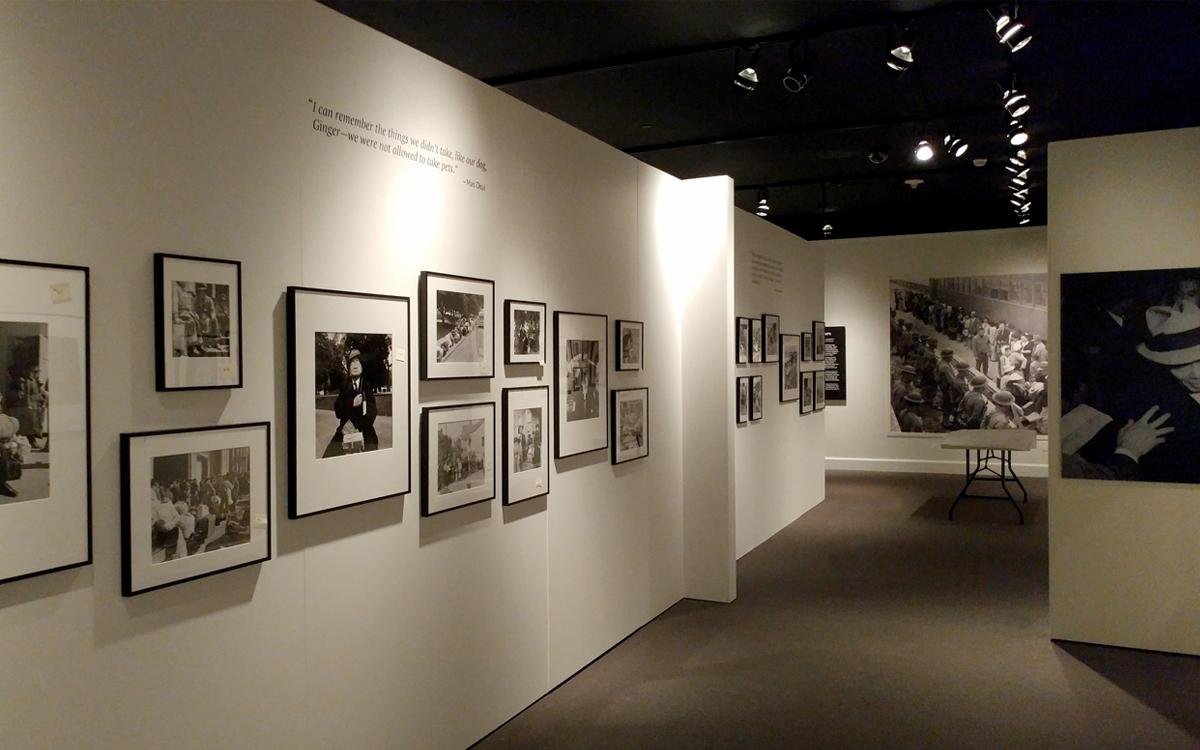Museum exhibit with framed photos and vinyl wall graphics
